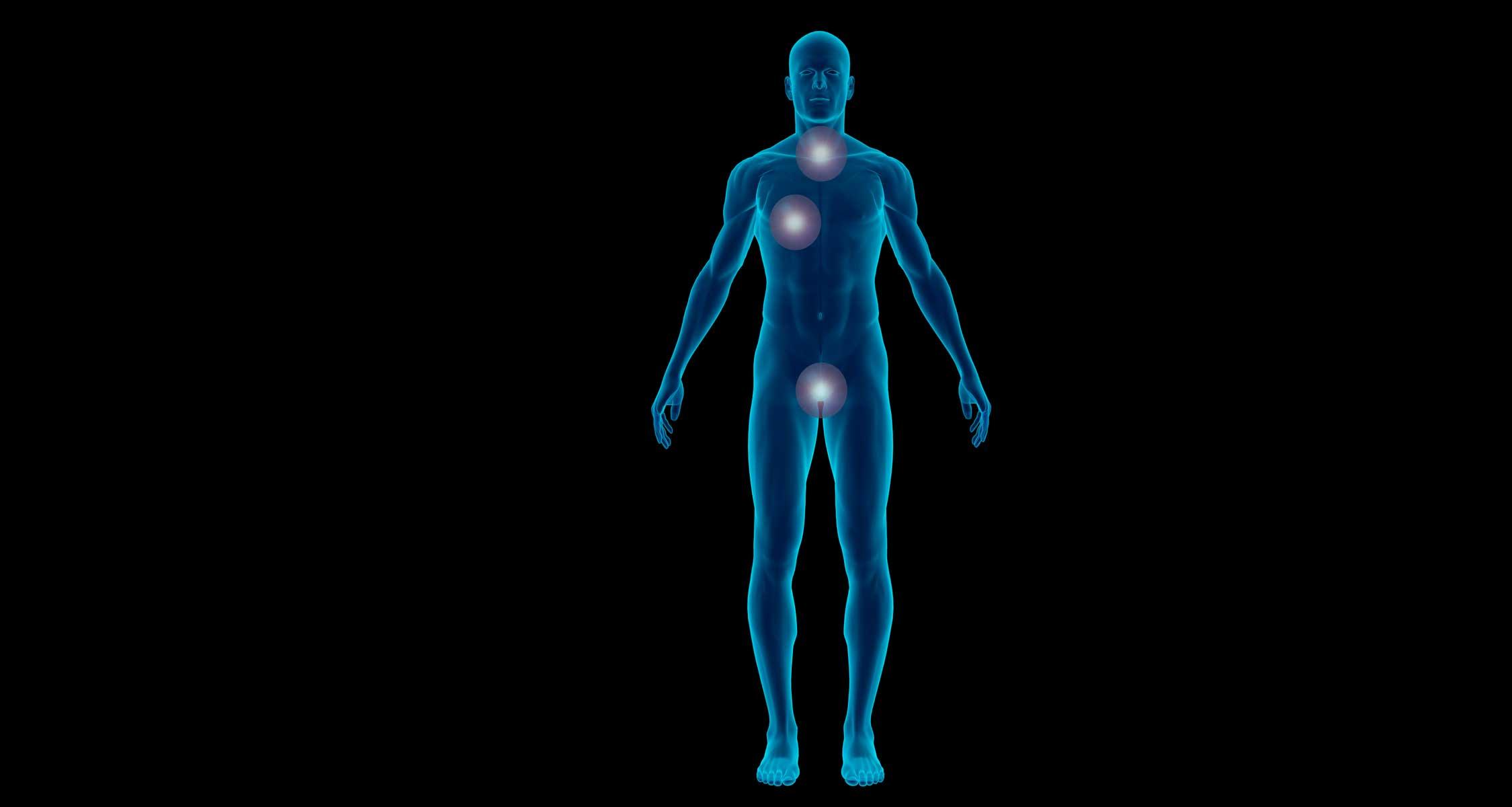 Graphics of human body